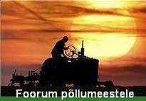 Foorum